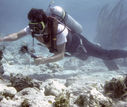 1992_David_on_Coral_Reef_in_Turks___Caicos_Islands.jpg